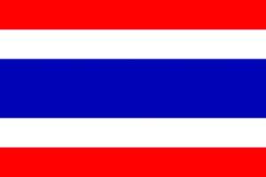 TH Flag